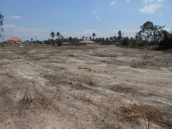Land for Sale Factory